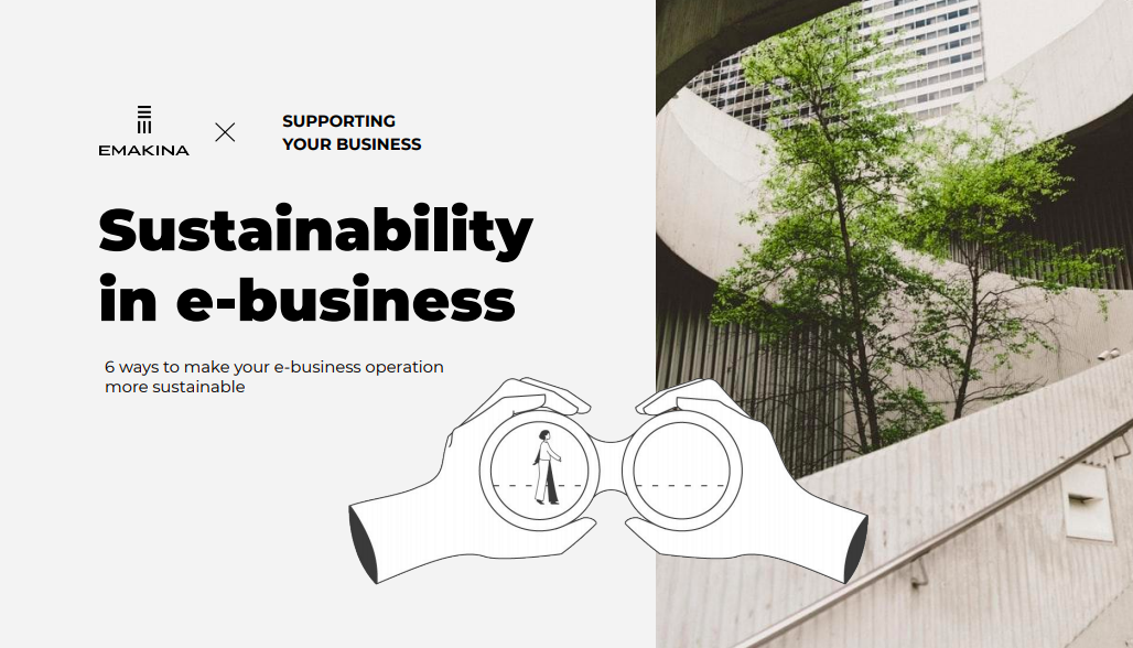 Sustainability in e-business